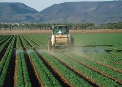 Pesticide application to lettuce in California. (Source: <a href='http://www.usda.gov/wps/portal/usdahome' class='external text' title='http://www.usda.gov/wps/portal/usdahome' rel='nofollow'>USDA</a>)