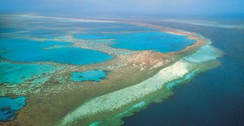 Bird's eye view of the Great Barrier Reef. Source: The Seven Natural Wonders of the World