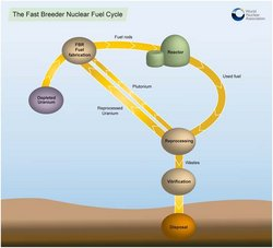 the fast breeder nuclear fuel cycle