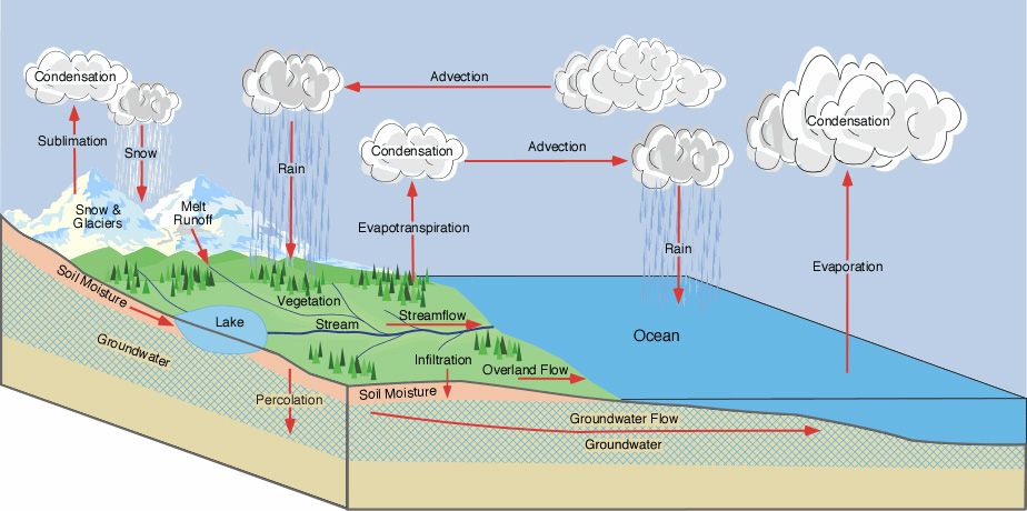 Figure 1: Hydrologic Cycle. (Source: <a href='http://www.physicalgeography.net/' class='external text' title='http://www.physicalgeography.net/' rel='nofollow'>PhysicalGeography.net</a>)
